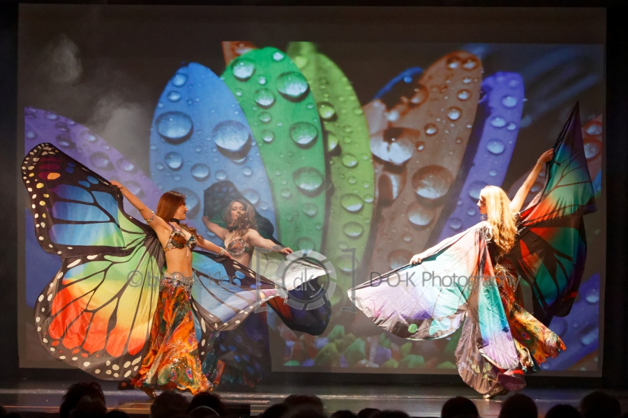 Foto 1 / Belly Bizarr Vol.8 Fantasy Butterfly